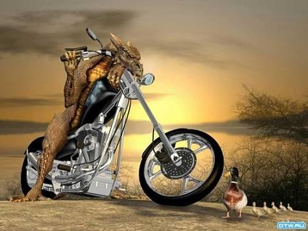 Мотоциклы - Байк Ленд